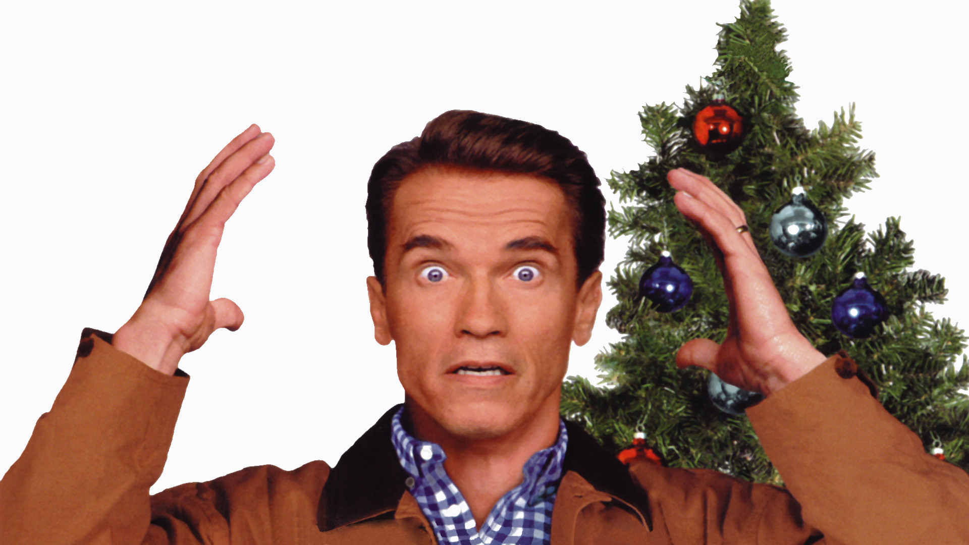 Image of Arnold Schwarzenegger from the movie Jingle All the Way