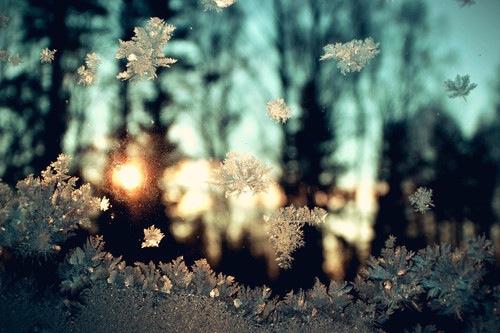 let it snow winter